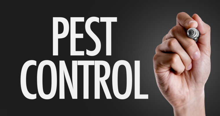 4 Pest Control Techniques You've Never Heard of
